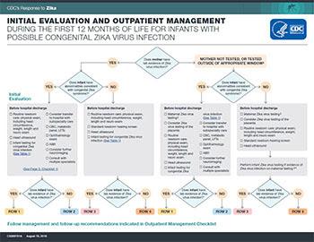 Avaliação recomendada e acompanhamento em longo prazo para bebês com possível infecção congênita pelo zika vírus - infográfico em miniatura