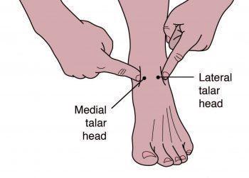 Palpating Medial Talar Head - El Paso Chiropractor