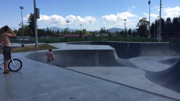 The two teens said they were drinking near the Matsqui Recreation Centre and skateboard park in Abbotsford.