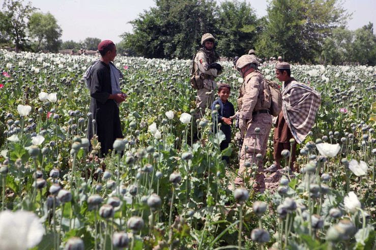 An American soldier greets local children in a poppy field in Helmand province, Afghanistan, May 8, 2011 (ISAF)