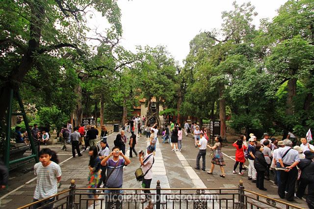 Imperial Garden, Forbidden City, Beijing