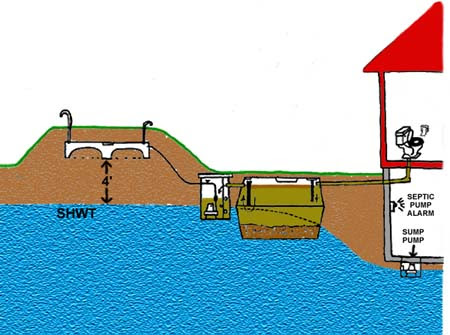 Evolution Of The Septic System