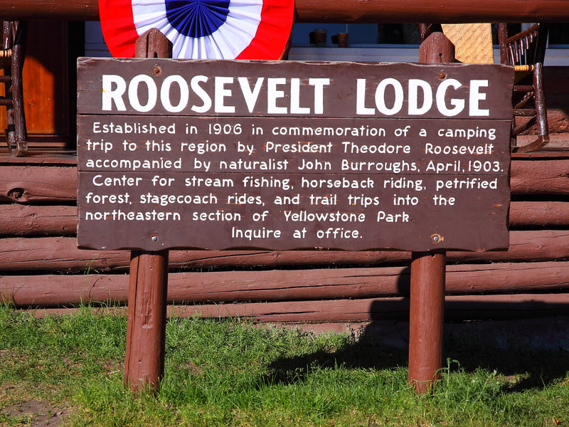IMG_8542 Roosevelt Lodge