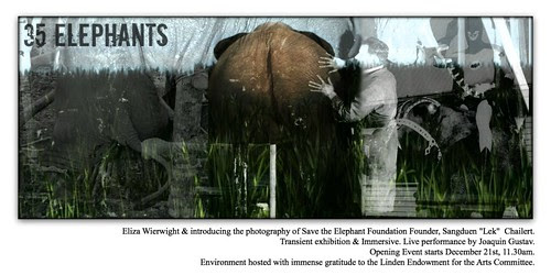 35 Elephants Art Immersive at LEA - Copy to Kara by Kara 2