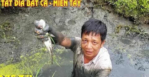 Tát Đìa Bắt Cá - Catch Fishes In Mekong Delta
