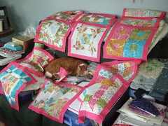 JRQAL quilt in progress