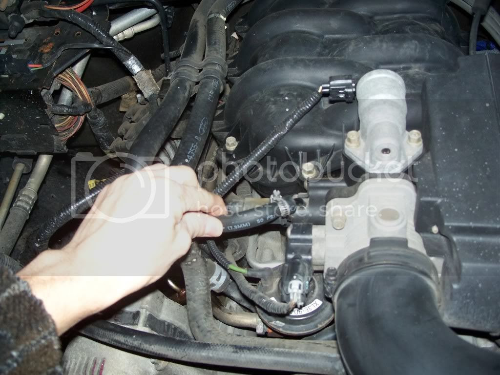1999 Ford F 150 Engine 42 L V6