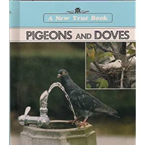 Pigeons and Doves (New True Books)