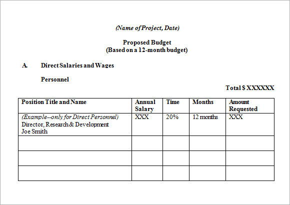 mentorship project sample budget request Word