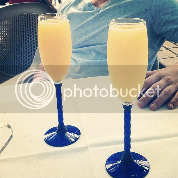 photo mimosas_zps64399d00.jpg