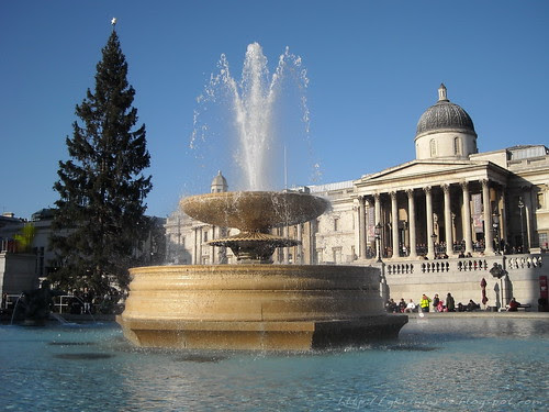Trafalgar square and Christmas tree