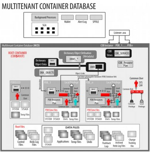 Oracle 12c Multi Tenant Database