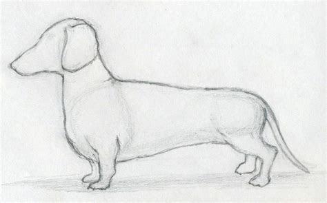 draw dog