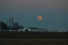 moon on farm