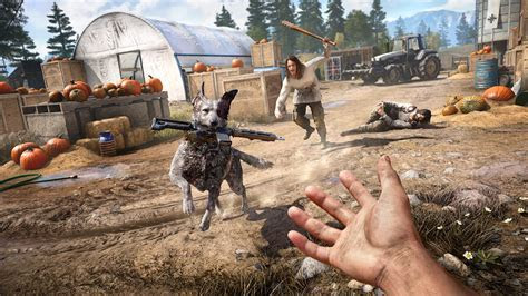 Far Cry 5 Dog Retrieve Rifle Wallpaper #46115