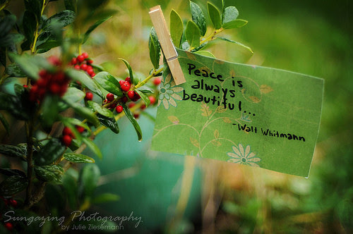 Peace Is Always Beautiful Nature Quote Quotespicturescom