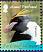 Macaroni Penguin Eudyptes chrysolophus