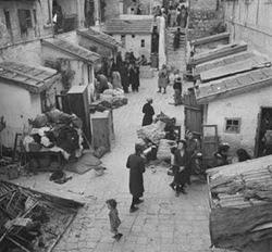 Ebrei del quartiere ebraico di Gerusalemme evacuati dalle loro case dalla Legione Araba