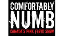 Comfortably Numb... Canada's Pink Floyd Show discount offer for show in Gatineau, QC (Canadian Museum Of Civilization Events)