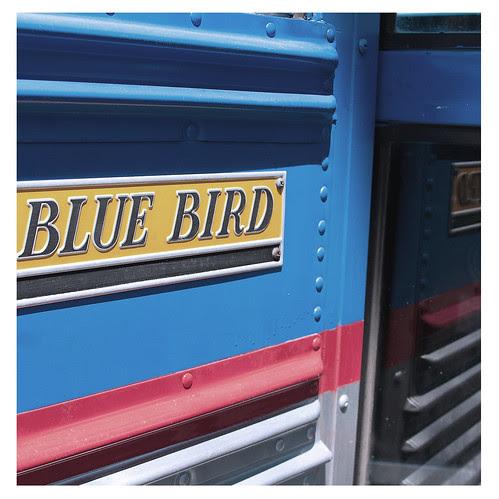 Priceless 2009: The Bus