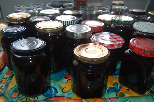 blackcurrant jelly July 11 2