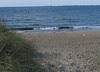 the beach :: standa