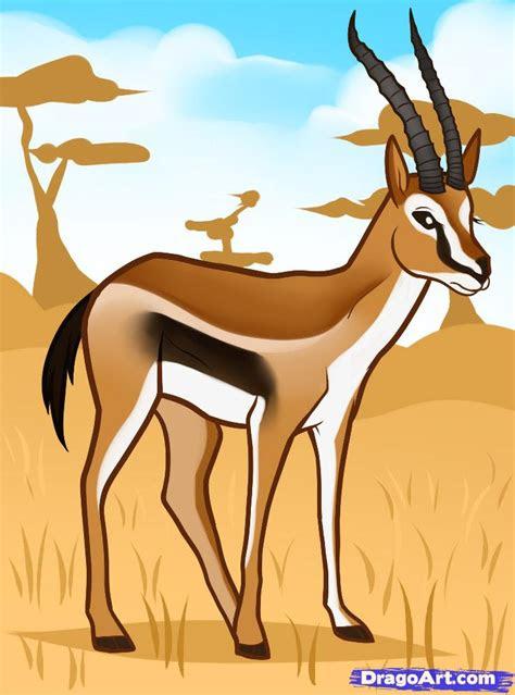 draw  gazelle gazelle step  step safari