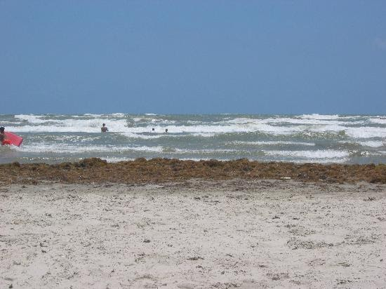 The fishing musician port aransas surf report july 2010 for Port aransas jetty fishing report