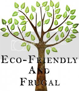 Eco-Friendly and Frugal