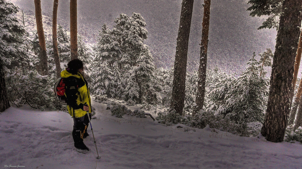 Paisaje invernal en la sierra guarrameña