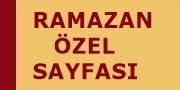 2017 Ramazan Özel