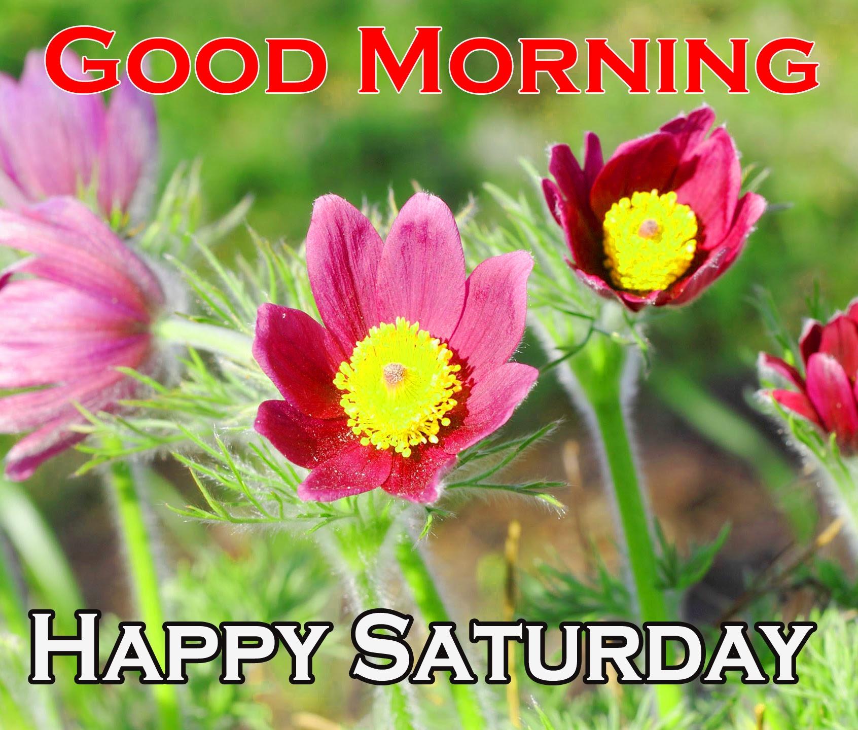 Saturday Good Morning Images 10