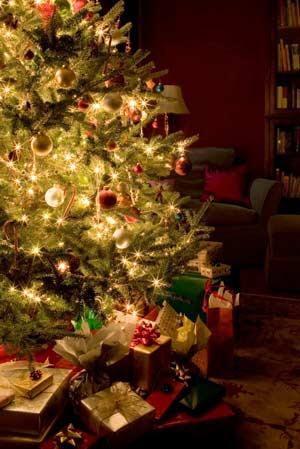 christmas_tree.jpg (300×449)