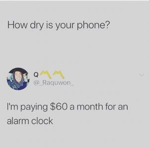 Memes | Collection of Funny Memes Updated Daily