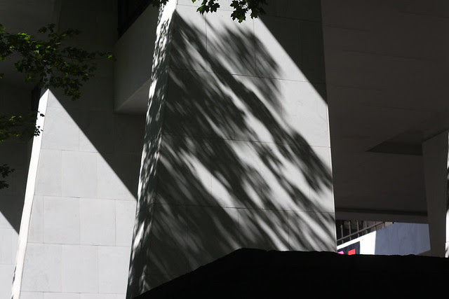 fall shadows, wells fargo datacenter