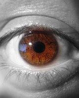 B&w and colour eye.jpg