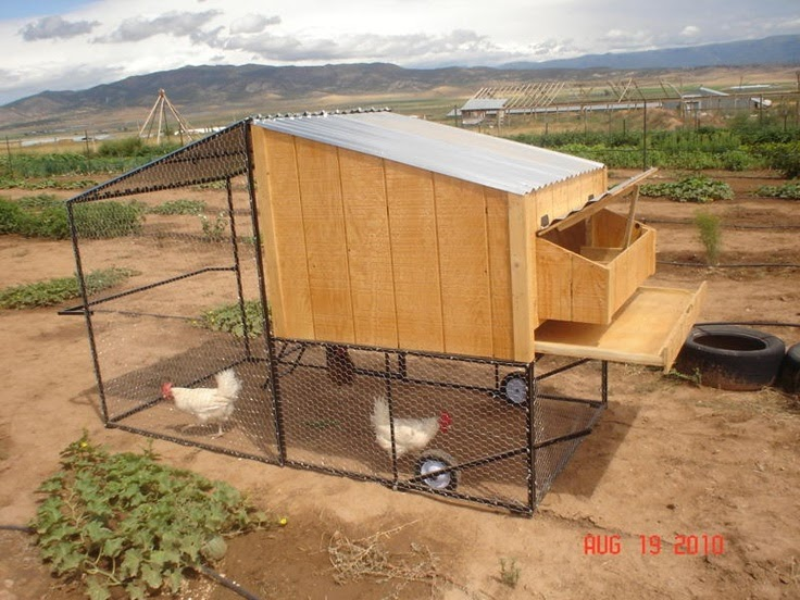 coop ret archive ultimate backyard chicken coop