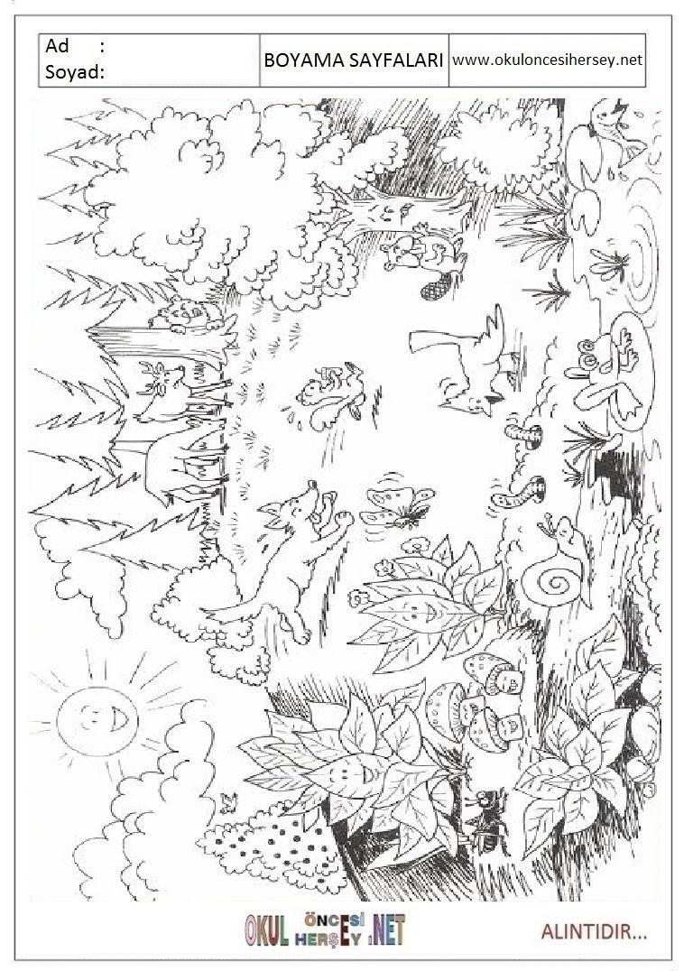 Manzara Boyama Sayfaları