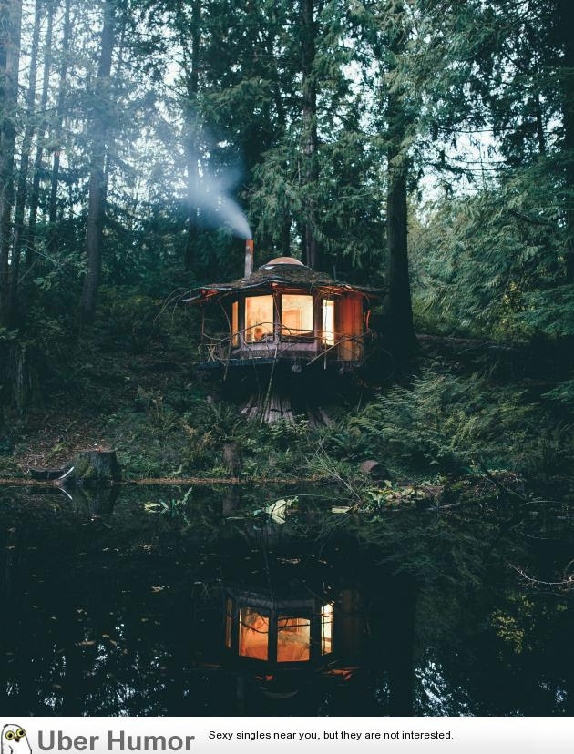 A Cabin Deep In The Woods In Washington Funny Pictures Quotes