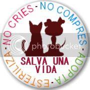 photo badge-PAG_zps13314477.jpg