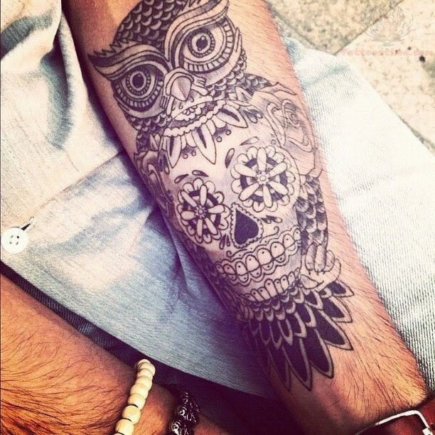 Owl And Skull Tattoo Designs