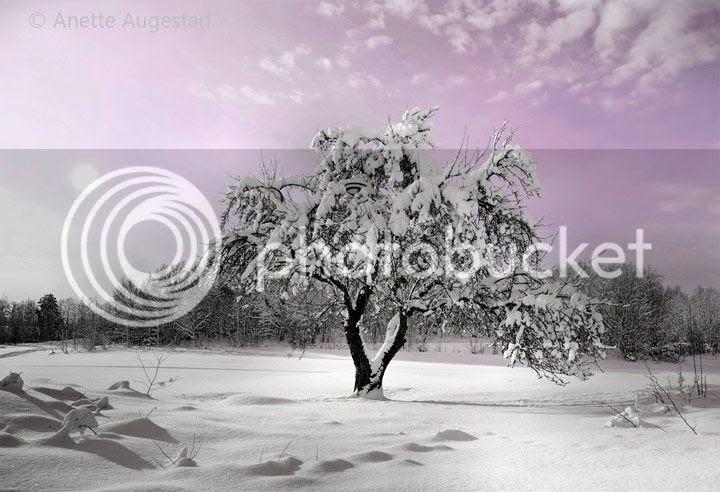 photo Anette-1_zps08b9ee5e.jpg