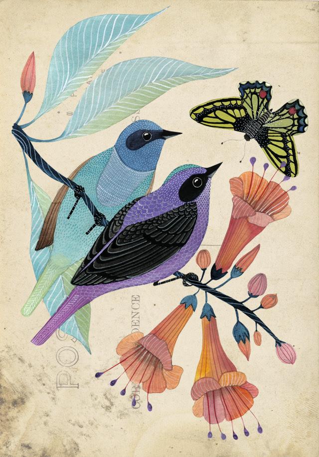 Two Birds & Butterfly