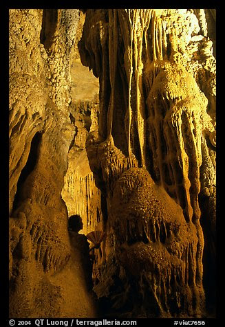 Visitor framed by cave formations, upper cave, Phong Nha Cave. Vietnam (color)