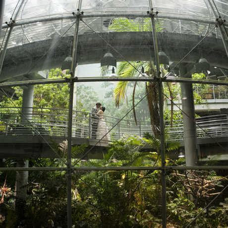 Plan an Event at the California Academy of Sciences