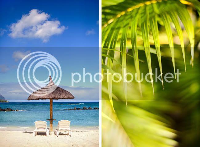 http://i892.photobucket.com/albums/ac125/lovemademedoit/mauritiuswedding1.jpg?t=1311181655