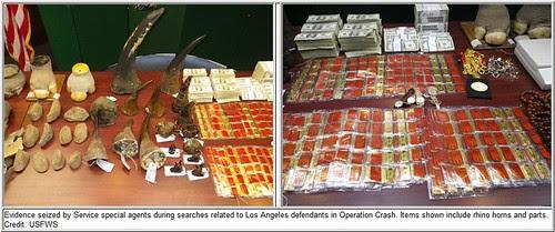 operation crash photos