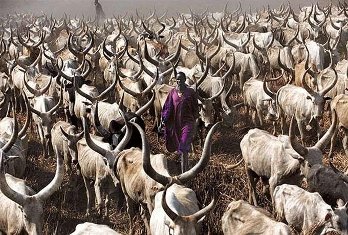 dinka-people-southern-sudan-angela-fisher-carol-beckwith-10