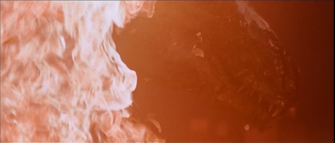 Ogra in burning pain.