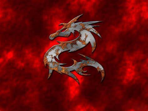 wallpaper dragon wallpapers